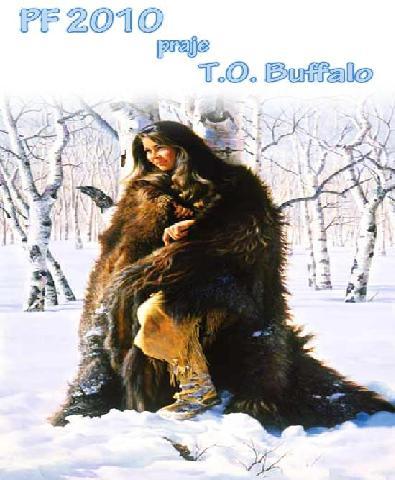 buffalo 2010 4